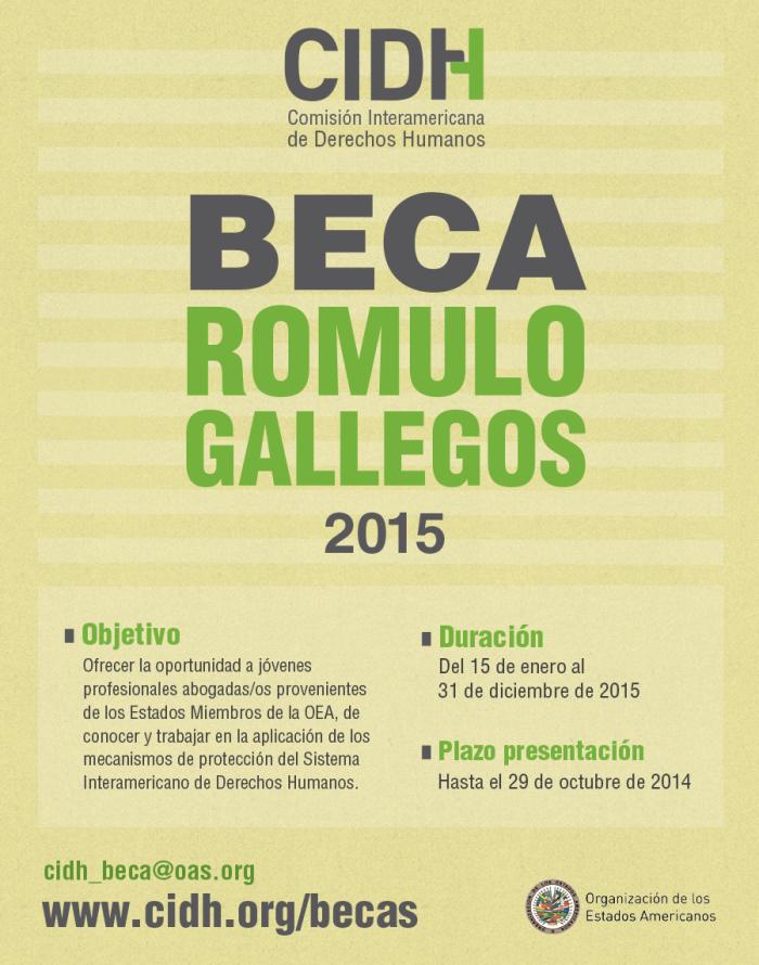 acedi-cilsa-cidh-beca-romulo-gallegos