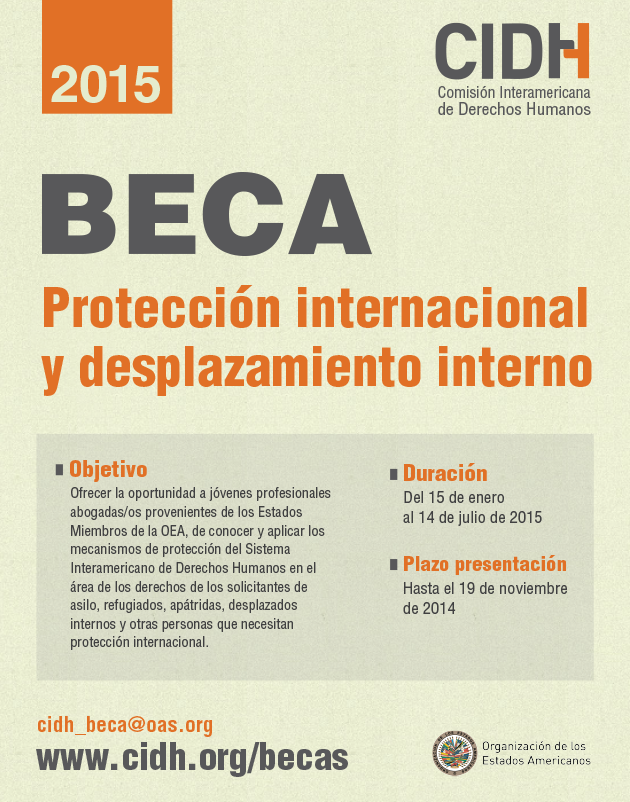 acedi-cilsa-beca-proteccion-internacional-desplazamiento-interno-cidh